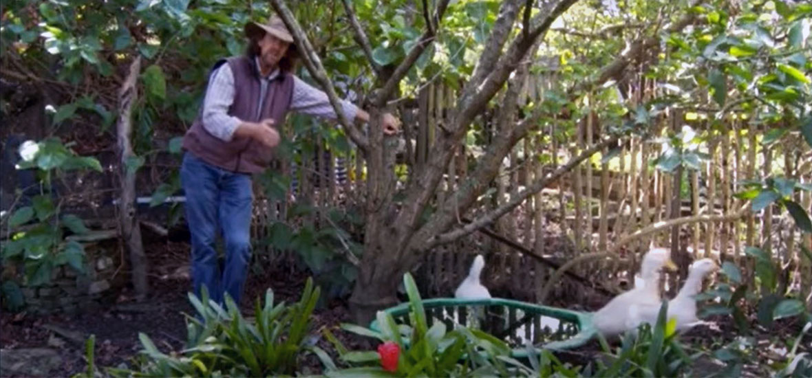 Urban Permaculture with Geoff Lawton