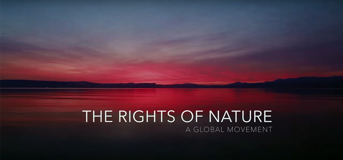 The Rights of Nature: A Global Movement