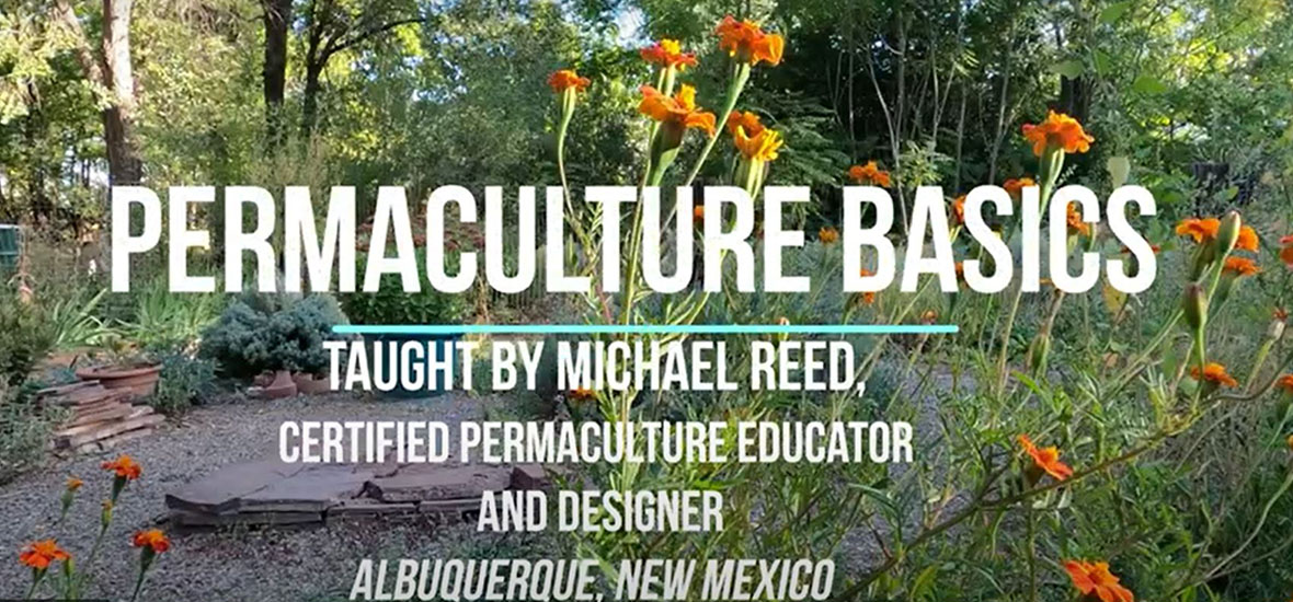 Permaculture Basics by Michael Reed